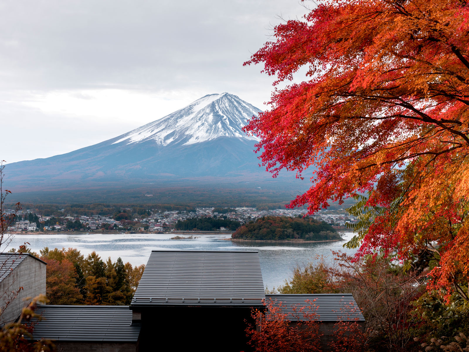 Mt. Fuji View in Autumn