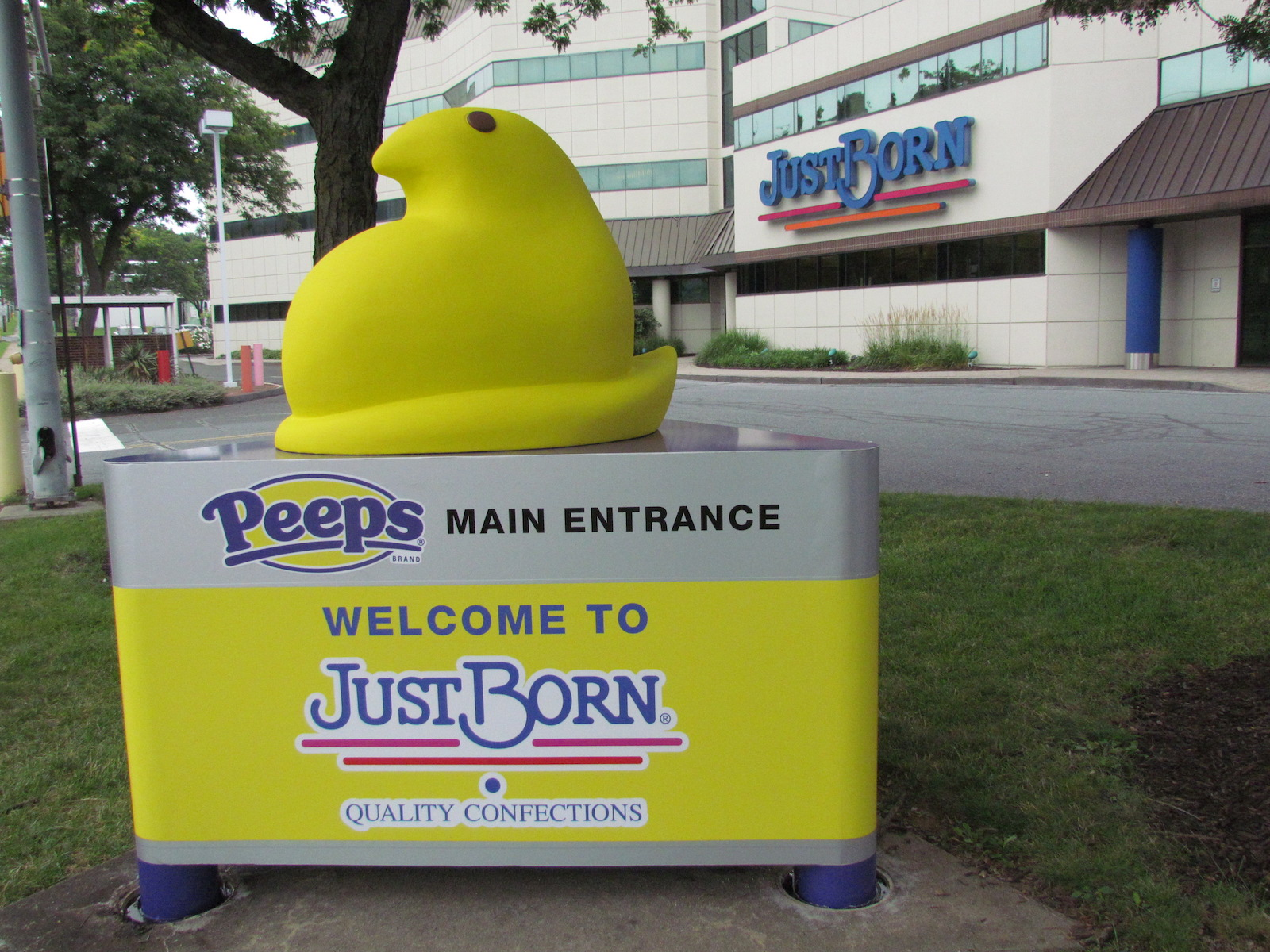Peeps Offers First-Ever Factory Tour to the Public — Here's How to Get Inside