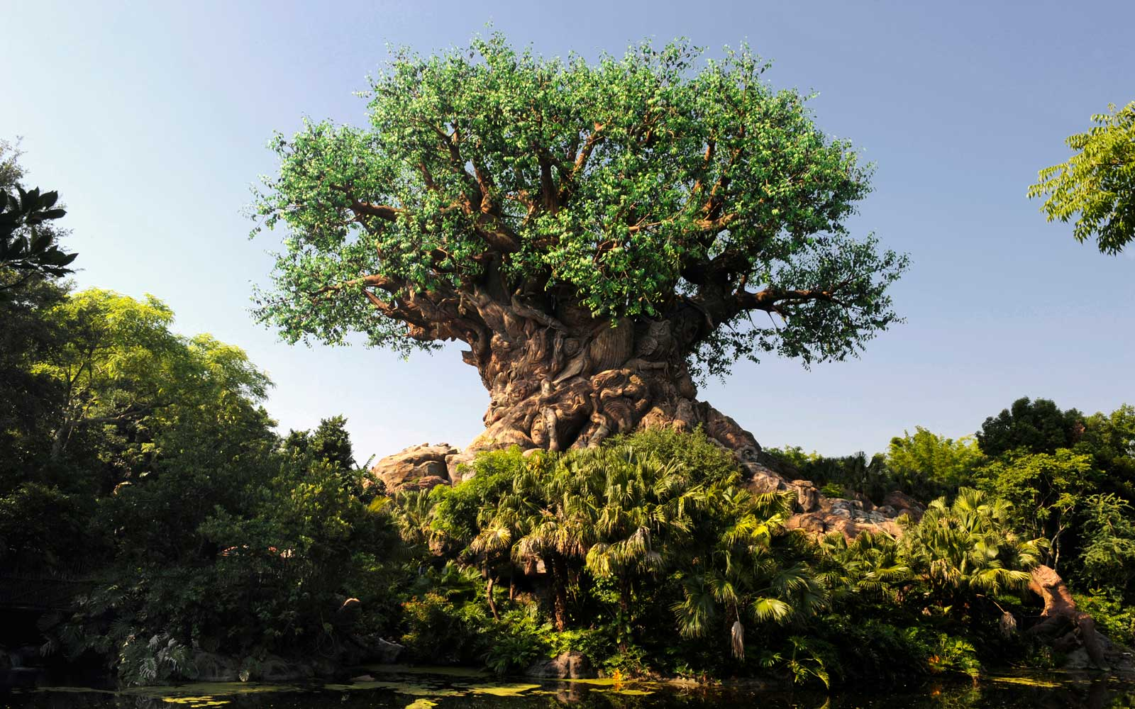 Animal Kingdom Guide - Walt Disney World