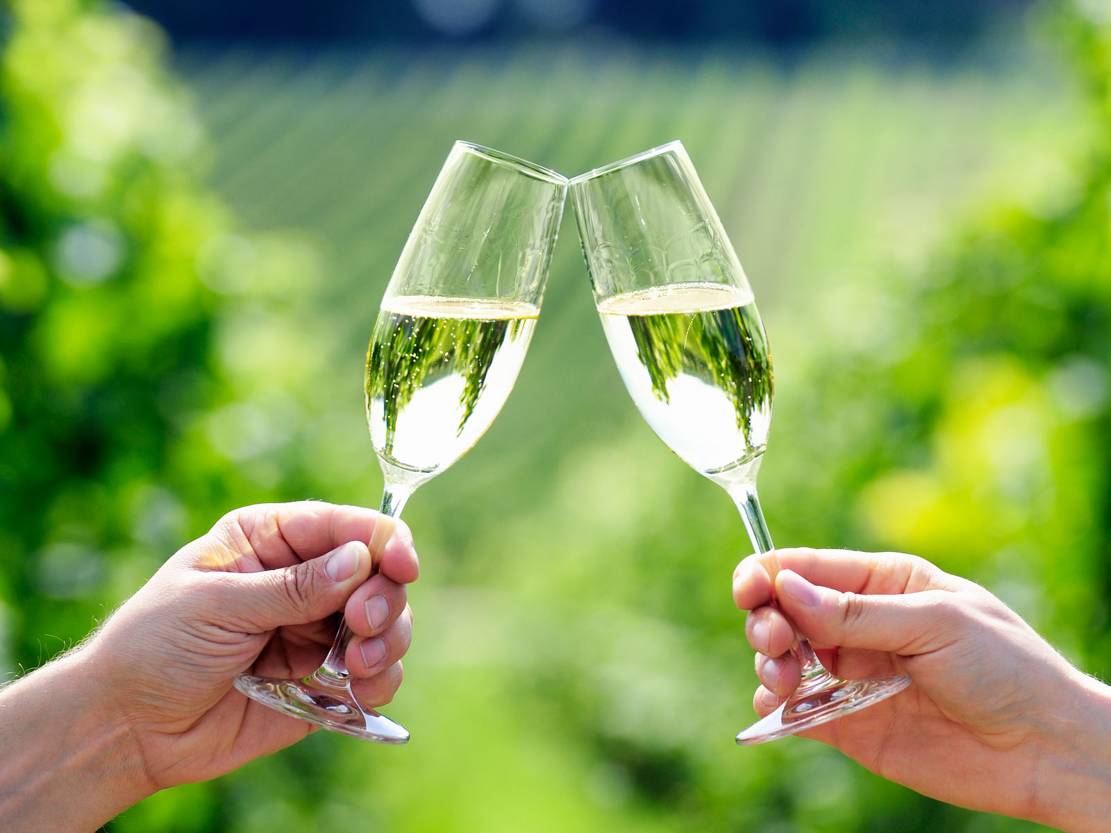 corpinnat-sparkling-wine-FT-BLOG0119.jpg