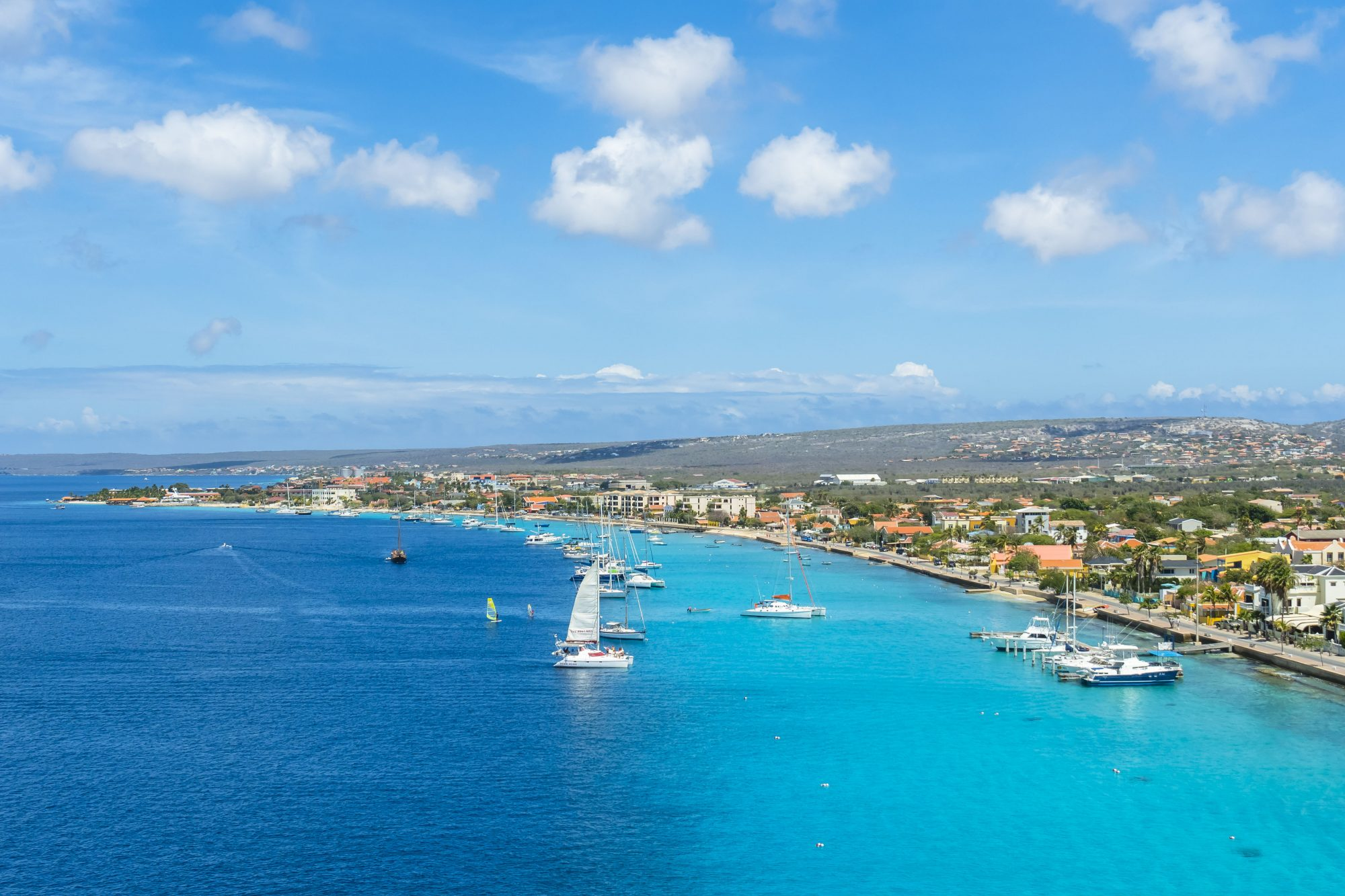 Caribbean beach, windsurfers paradise, calm and shallow waters. Many windsurfers in the sea