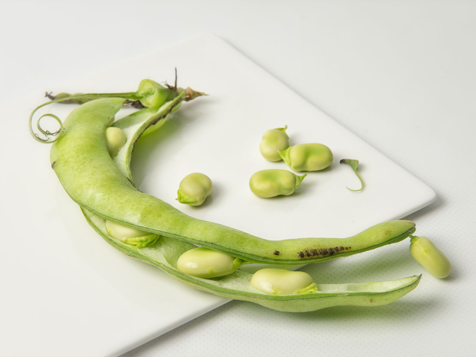 17 Chefs on Their Favorite Ways to Cook Fava Beans