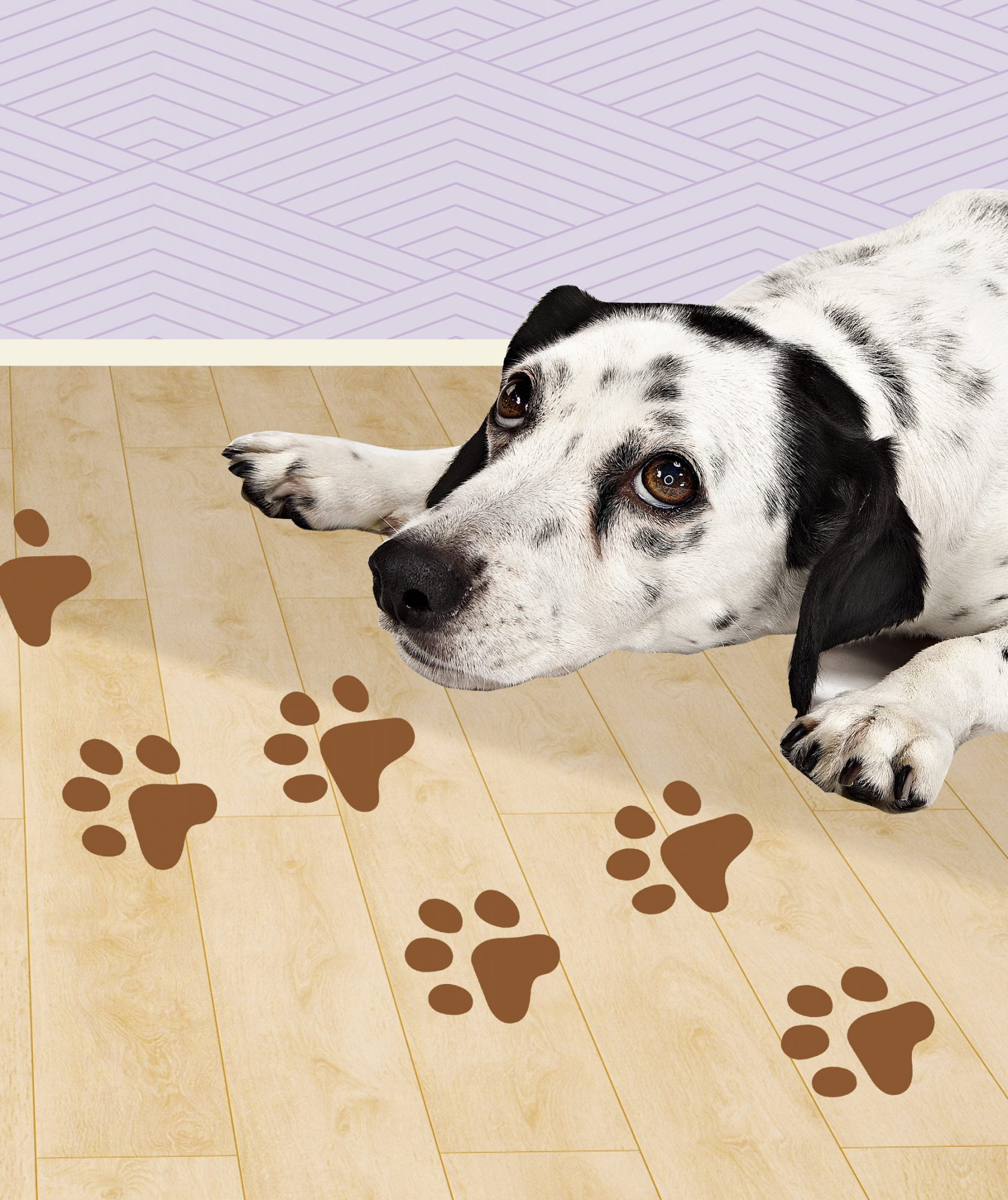 The Secret to Cleaning Wood Floors Like a Pro Is Easier Than You Think