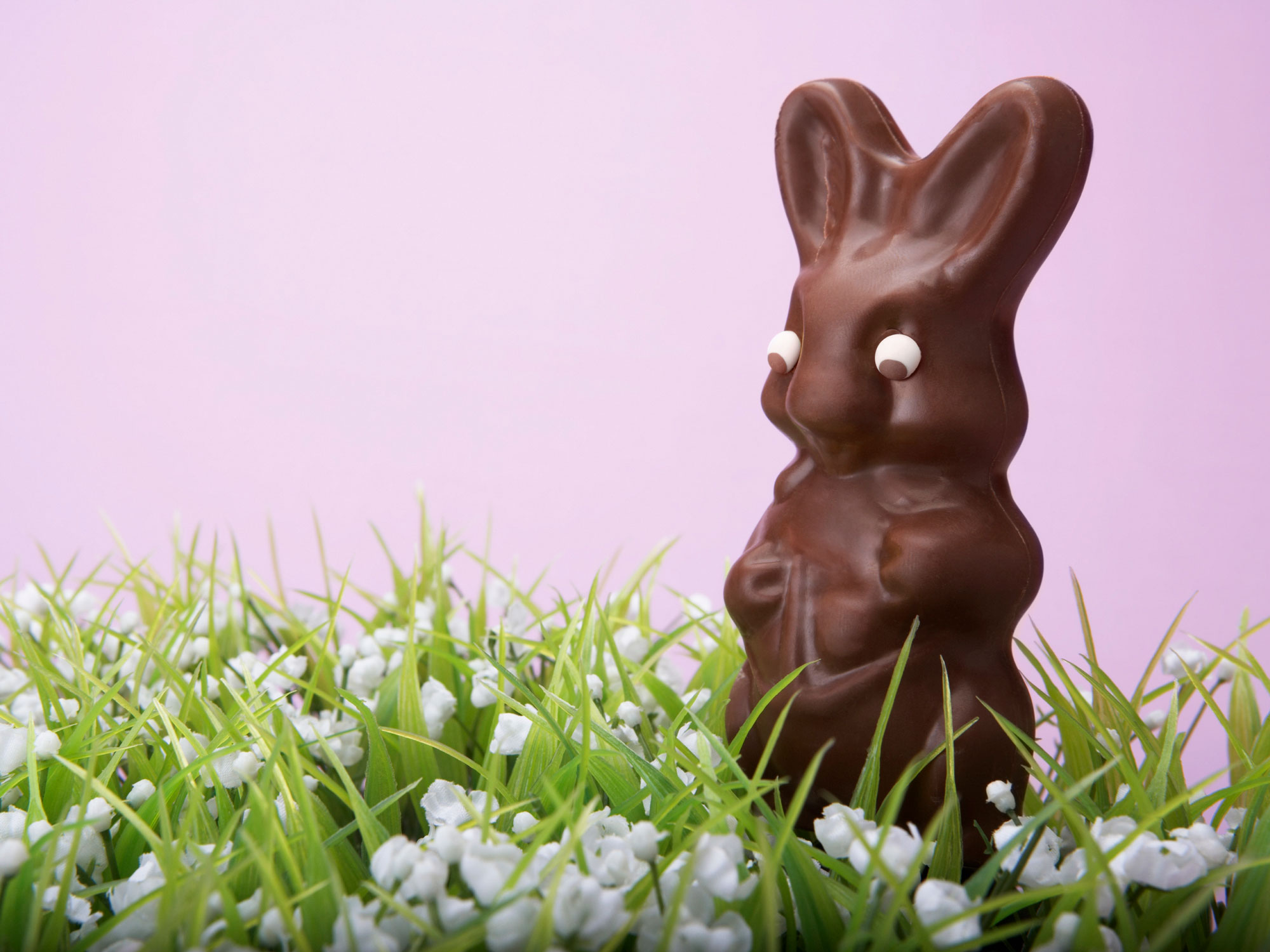 Your Chocolate Bunny May Not Really Be Made of Chocolate—Here's How to Tell