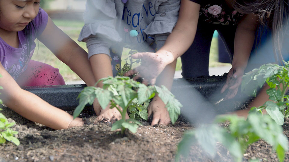 Gardening Gives the Kids of Migrant Workers a Head Start