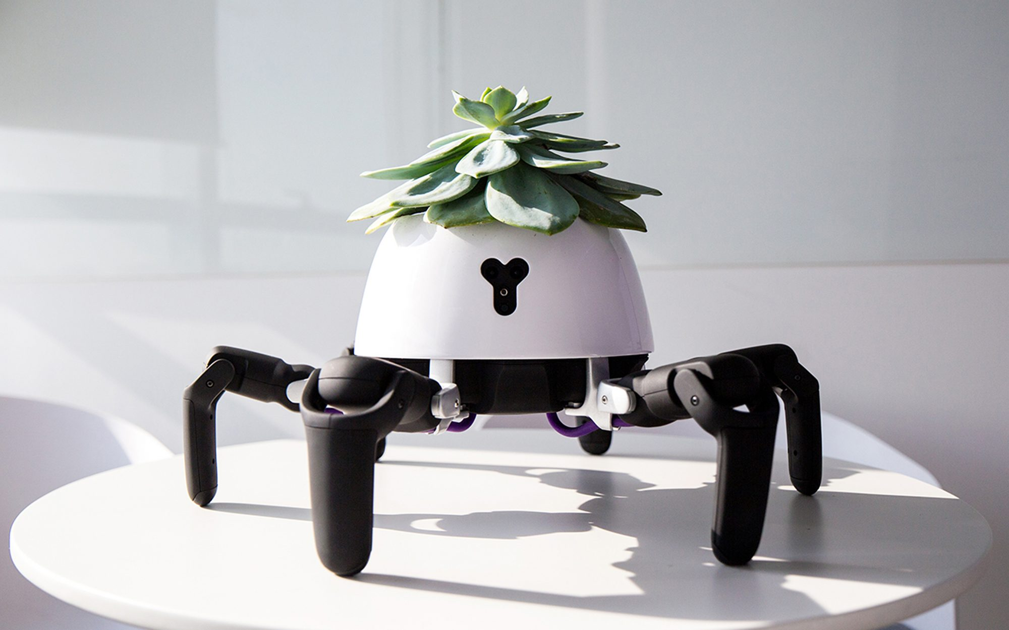 This Robot Planter Follows the Sun to Keep Your House Plants Alive, No Green Thumb Required