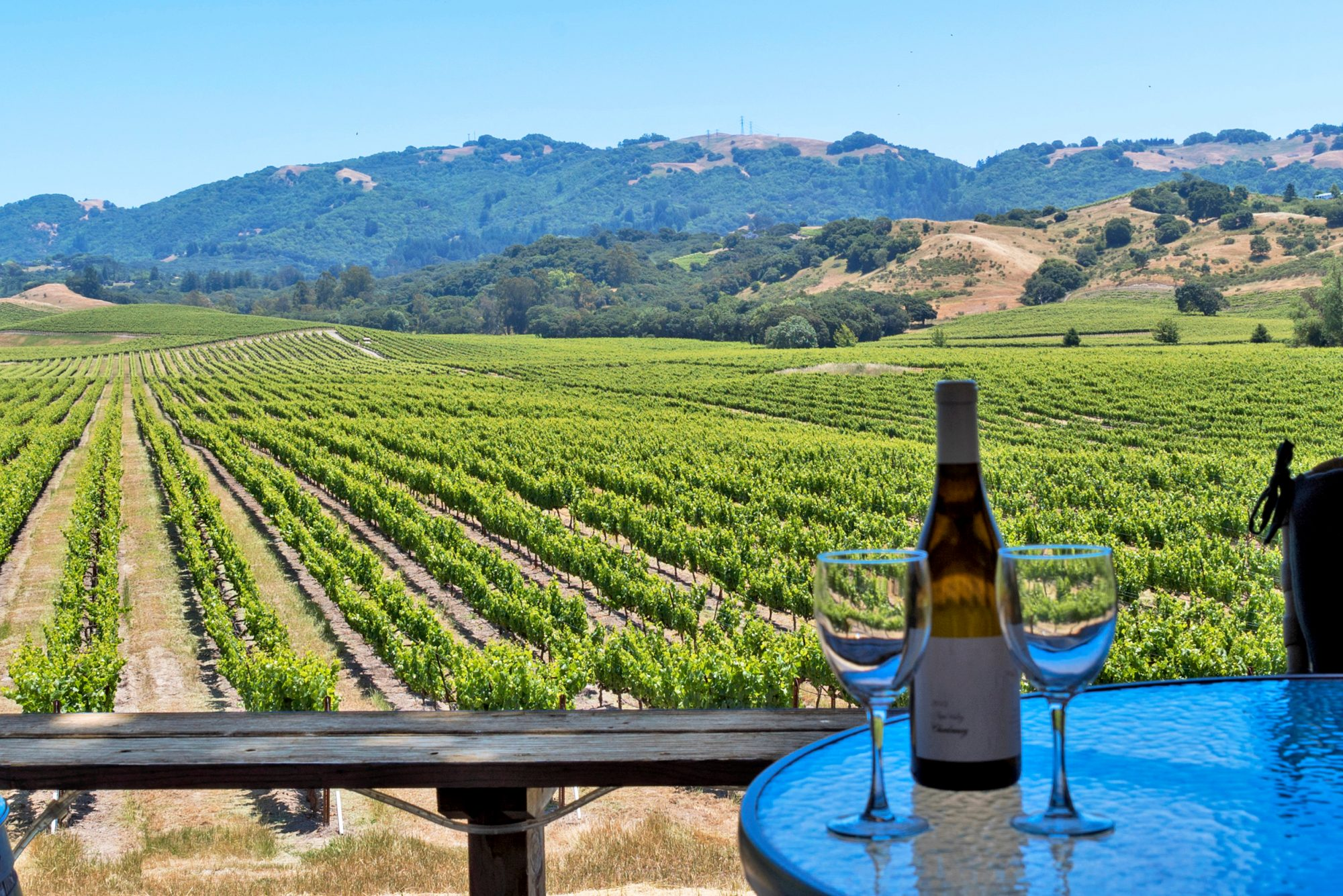 48 Hours in Sonoma: Where to Eat, Drink, and Stay This Summer