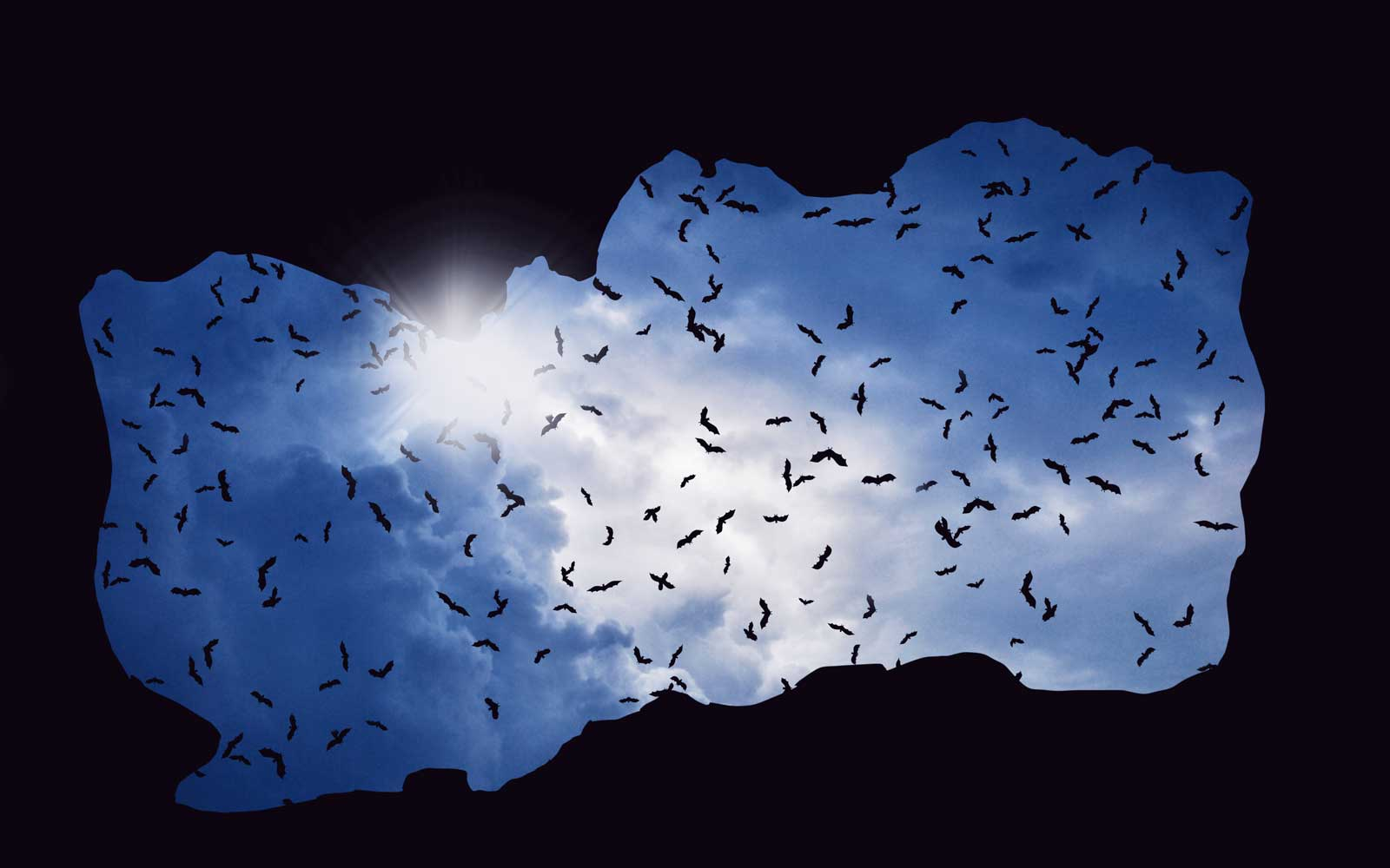 bats flying in the sky above cave