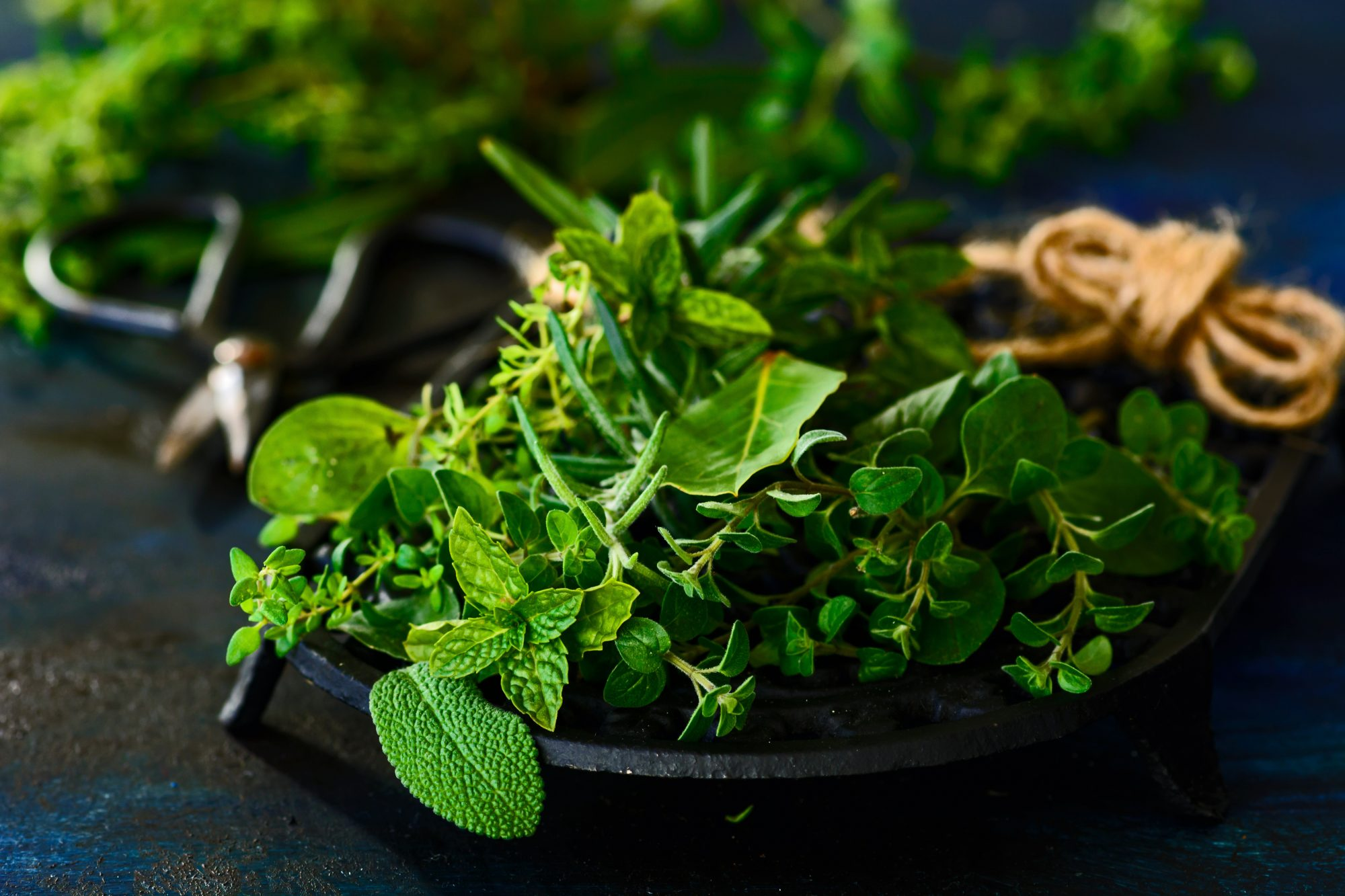 5 Lesser Known Herbs That Will Make Your Summer Dishes Sing