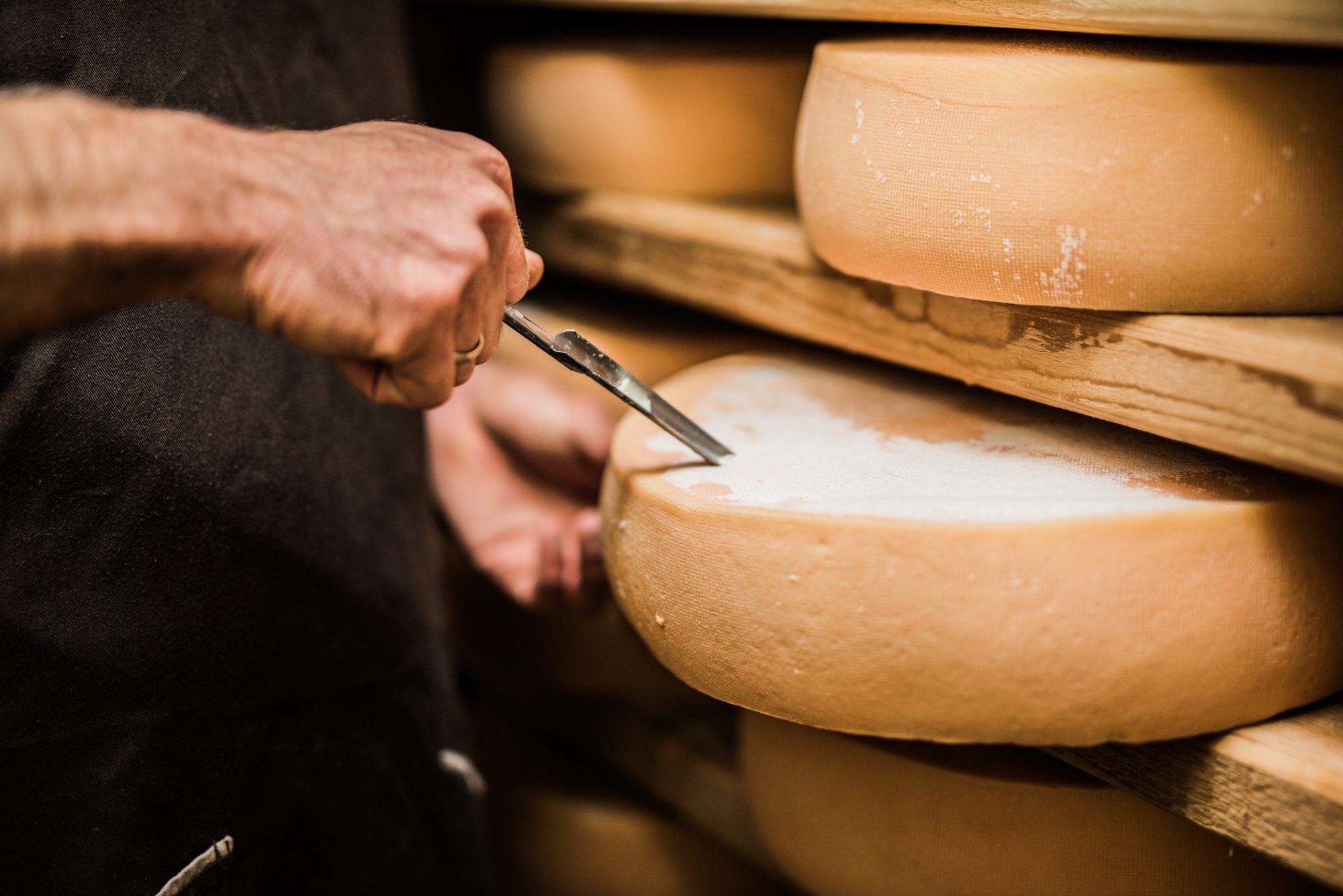 How a Professional Cheese Expert Grades Cheeses