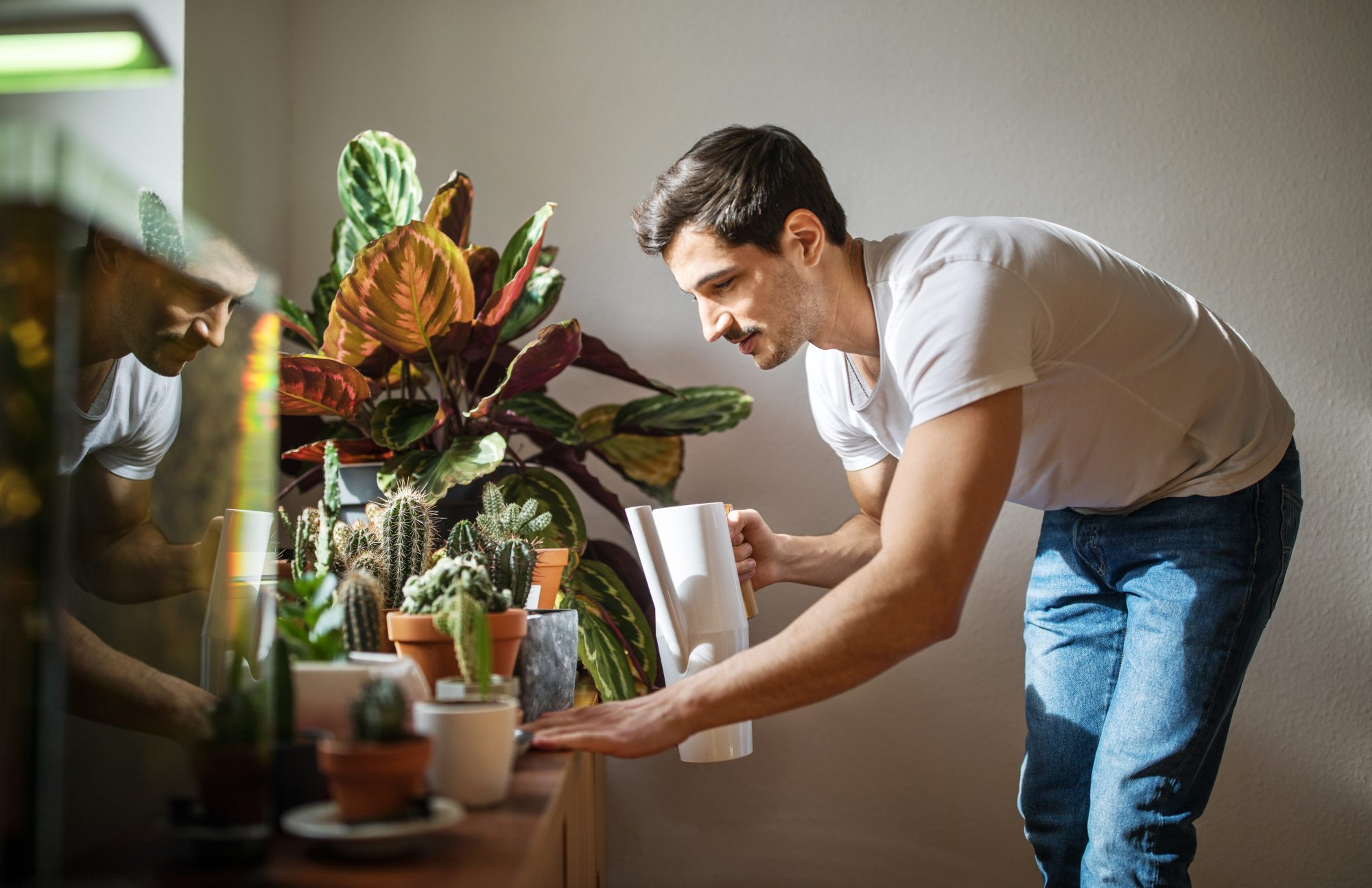 Not Finishing That Coffee? Your Plants Might Want It