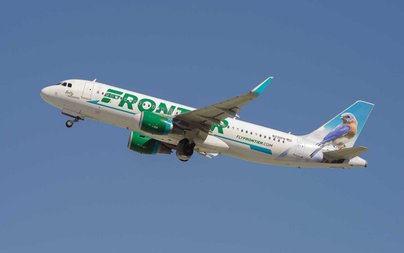 Frontier Is Giving a Free Flight to People With the Last Name Green (or Greene)