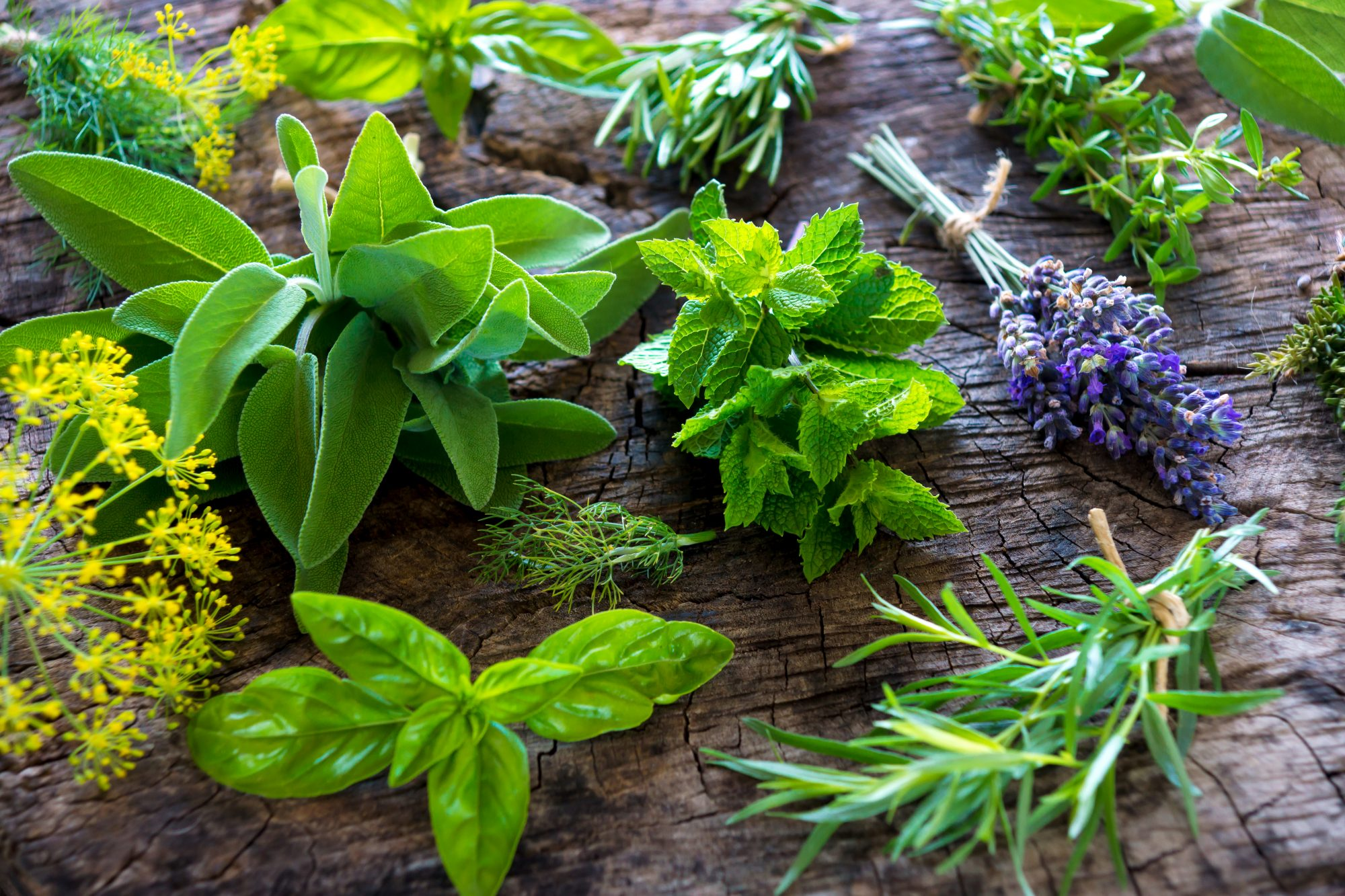 """How Much Is a """"Bunch"""" of Herbs Supposed to Be?"""
