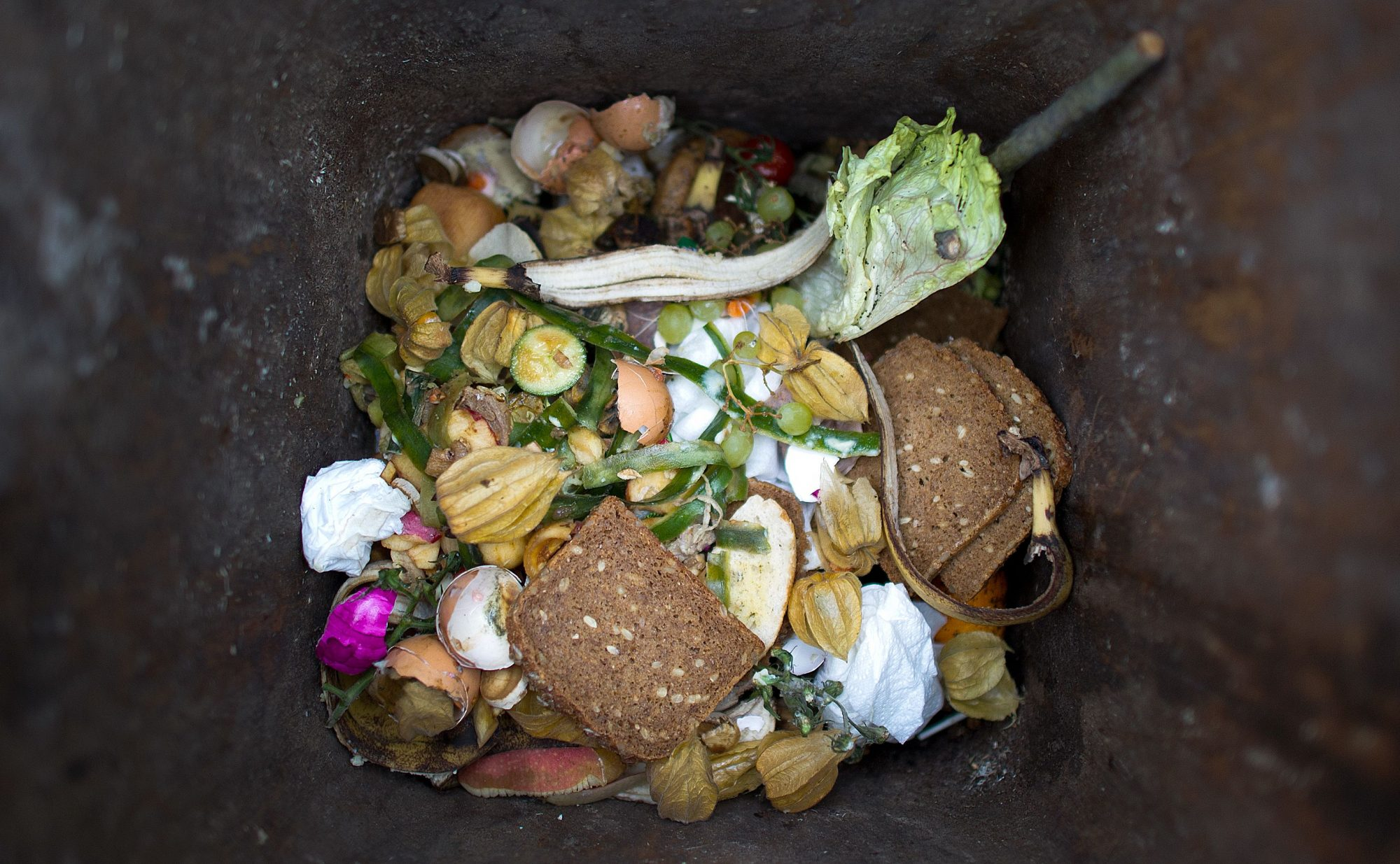 GERMANY-POLITICS-FOOD-WASTE