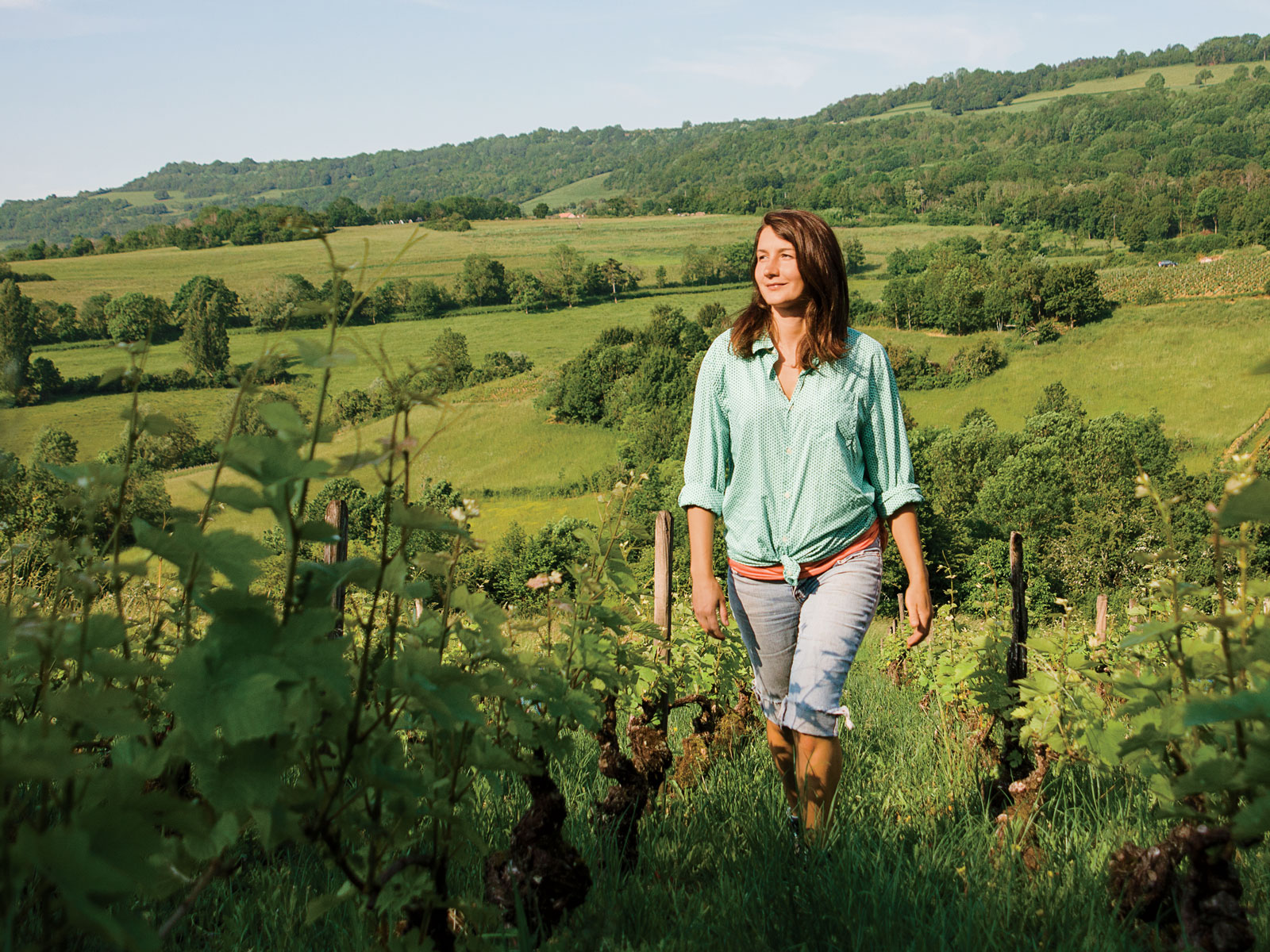 Four Winemakers Going Natural in Burgundy