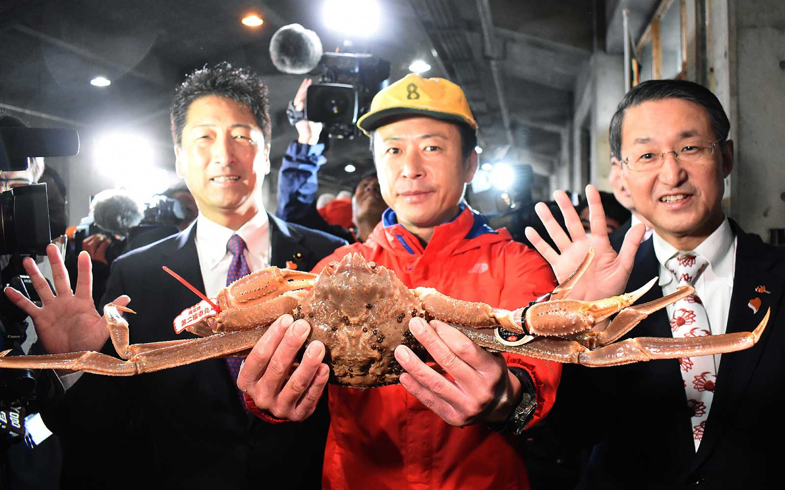 The crab, weighing in at 1.2 kilogrammes and measuring 14.6 centimetres across, went for a final price of five million yen at the auction in western Tottori prefecture.