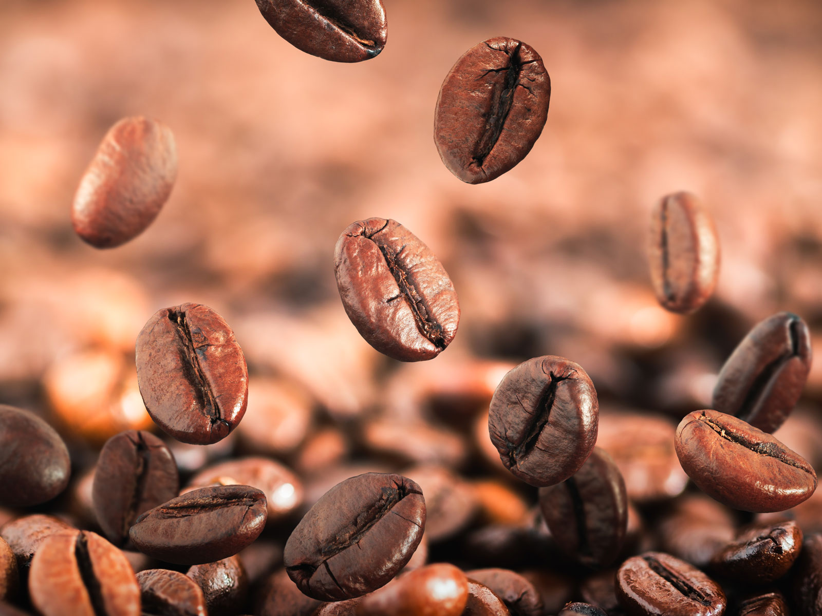 Predicted Global Coffee Shortage Is Nothing to Panic About